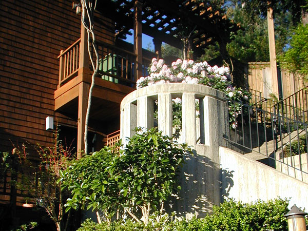 You are browsing images from the article: Mill Valley